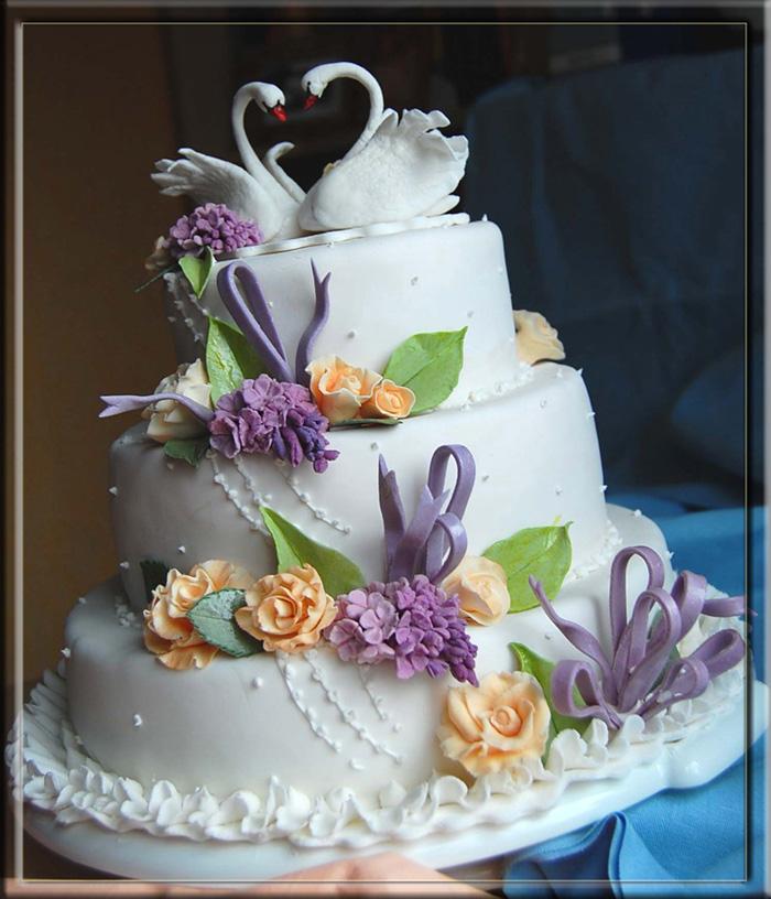 торт на акцию2